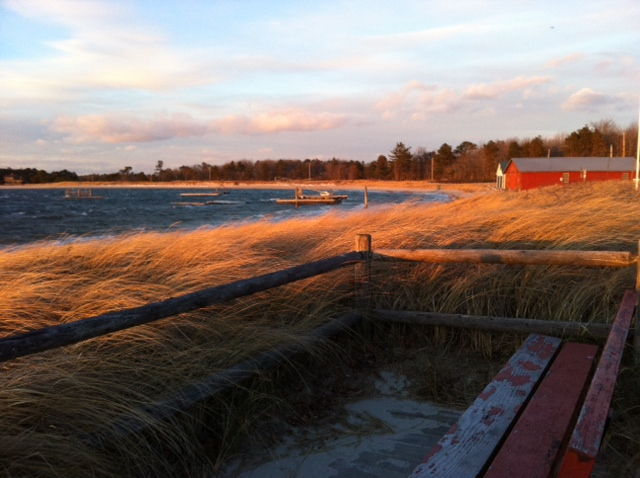 The dunes at Ferry Beach in Scarborough